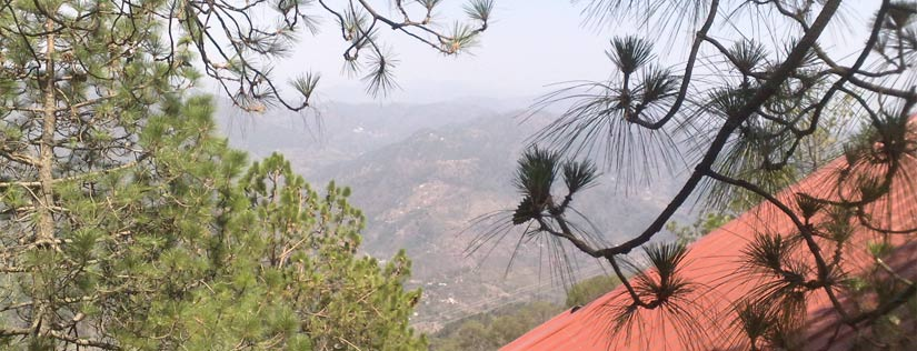 About Kasauli