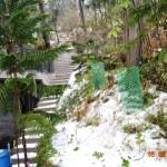 snow-fall-kasauli-12