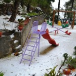 snow-fall-kasauli-16