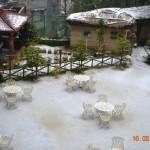 snow-fall-kasauli-21