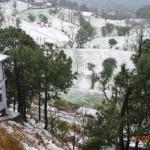 snow-fall-kasauli-23