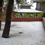 snow-fall-kasauli-24
