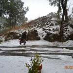 snow-fall-kasauli-25