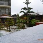 snow-fall-kasauli-3