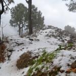snow-fall-kasauli-6